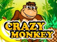 Crazy Monkey в Вулкан 24 — играть